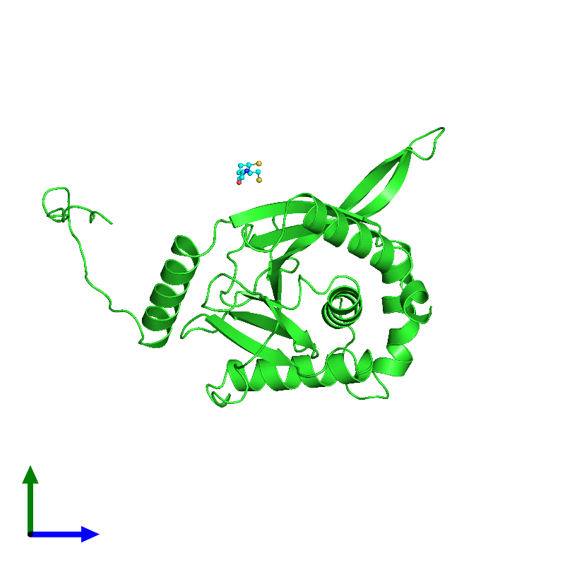<div class='caption-body'><ul class ='image_legend_ul'>The deposited structure of PDB entry 1eae coloured by chain and viewed from the side. The entry contains: <li class ='image_legend_li'>1 copy of Dihydrolipoyllysine-residue acetyltransferase component of pyruvate dehydrogenase complex</li><li class ='image_legend_li'>There is 1 non-polymeric molecule<ul class ='image_legend_ul'><li class ='image_legend_li'>1 copy of 6,8-DIMERCAPTO-OCTANOIC ACID AMIDE</li></ul></li></div>