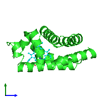 PDB 1eca coloured by chain and viewed from the side.