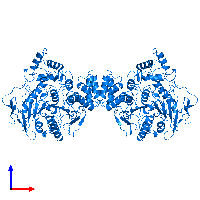 PDB 1eea contains 2 copies of Acetylcholinesterase in assembly 1. This protein is highlighted and viewed from the front.