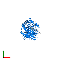 PDB 1ehn contains 1 copy of Chitinase A in assembly 1. This protein is highlighted and viewed from the top.