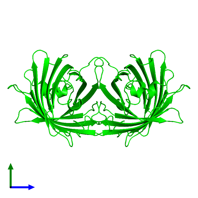 <div class='caption-body'><ul class ='image_legend_ul'> Dimeric assembly 1 of PDB entry 1emk coloured by chemically distinct molecules and viewed from the side. This assembly contains:<li class ='image_legend_li'>2 copies of Green fluorescent protein</li></ul></div>