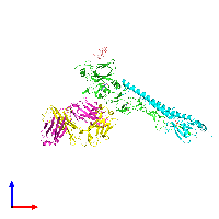 PDB 1eo8 coloured by chain and viewed from the front.