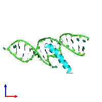 PDB 1etg coloured by chain and viewed from the front.