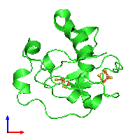 PDB 1fda coloured by chain and viewed from the front.