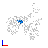 PDB 1ffz contains 1 copy of R(P*CP*C*)-D(P*A)-R(P*(PU)) in assembly 1. This DNA/RNA hybrid molecule is highlighted and viewed from the front.