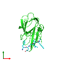 PDB 1fiv coloured by chain and viewed from the top.