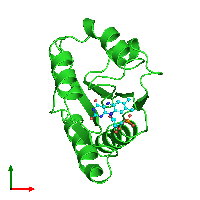 PDB 1fla coloured by chain and viewed from the top.