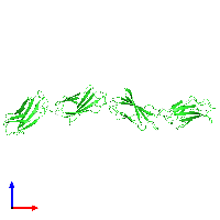 PDB 1fnf coloured by chain and viewed from the front.