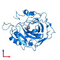 PDB 1fqr contains 1 copy of Carbonic anhydrase 2 in assembly 1. This protein is highlighted and viewed from the front.