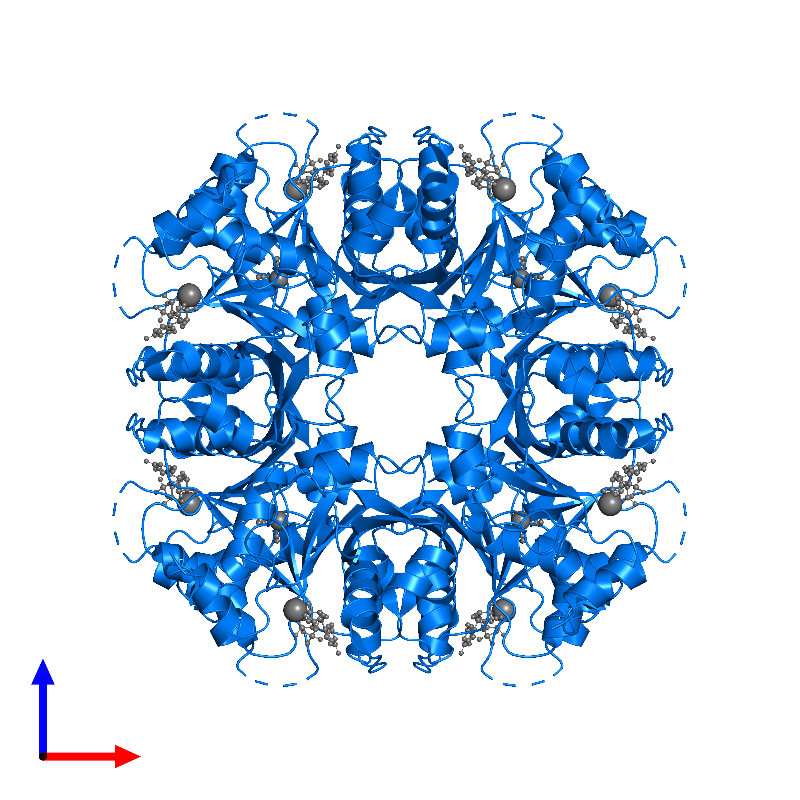 <div class='caption-body'>PDB entry 1frw contains 8 copies of Molybdenum cofactor guanylyltransferase in assembly 1. This protein is highlighted and viewed from the front.</div>