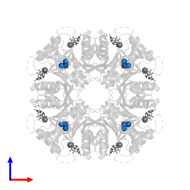 <div class='caption-body'>PDB entry 1frw contains 8 copies of ACETATE ION in assembly 1. This small molecule is highlighted and viewed from the front.</div>
