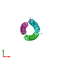 PDB 1gcm coloured by chain and viewed from the top.