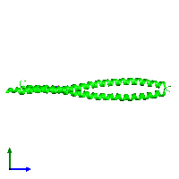 Dimeric assembly 3 of PDB entry 1gk4 coloured by chemically distinct molecules and viewed from the side.