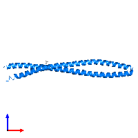 PDB 1gk4 contains 2 copies of Vimentin in assembly 1. This protein is highlighted and viewed from the front.