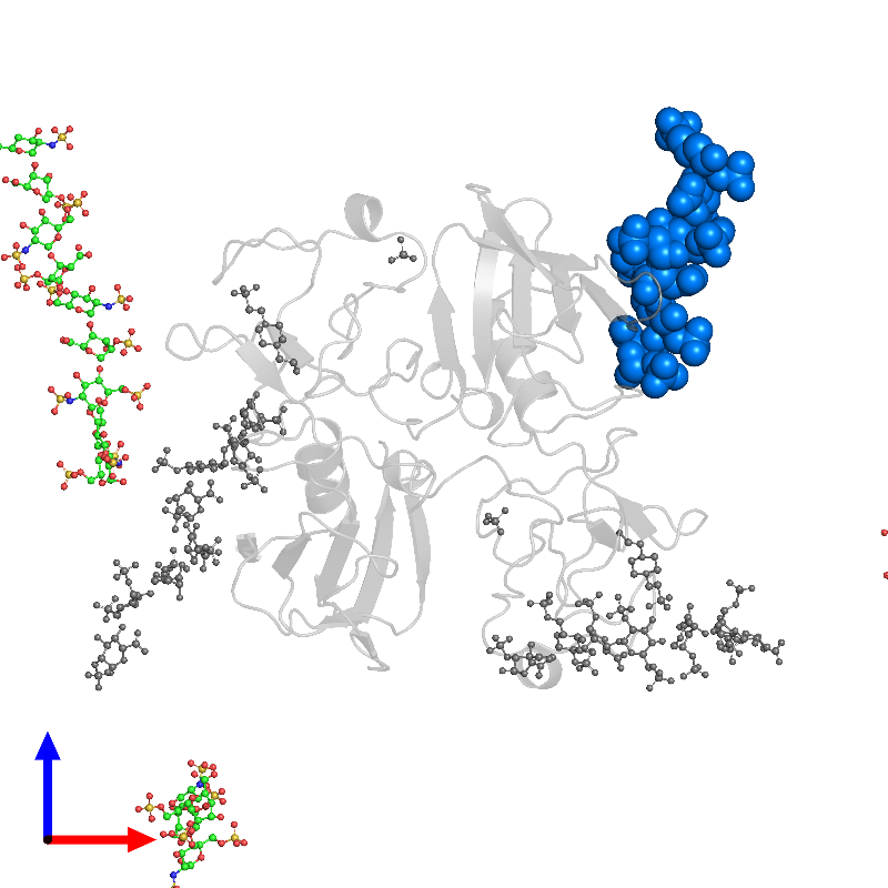 <div class='caption-body'>PDB entry 1gmo contains 1 copy of 2-deoxy-6-O-sulfo-2-(sulfoamino)-alpha-D-glucopyranose-(1-4)-2-O-sulfo-alpha-L-idopyranuronic acid-(1-4)-2-deoxy-6-O-sulfo-2-(sulfoamino)-alpha-D-glucopyranose-(1-4)-2-O-sulfo-alpha-L-idopyranuronic acid-(1-4)-2-deoxy-6-O-sulfo-2-(sulfoamino)-alpha-D-glucopyranose-(1-4)-2-O-sulfo-alpha-L-idopyranuronic acid in assembly 1. This small molecule is highlighted and viewed from the front.</div>