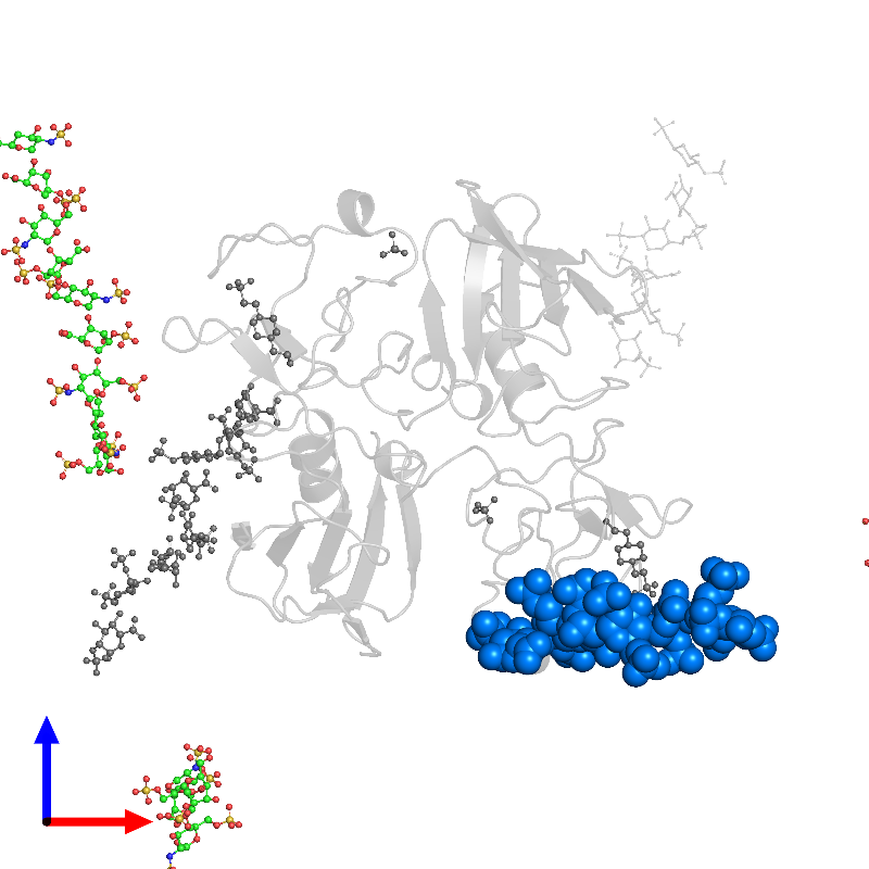 <div class='caption-body'>PDB entry 1gmo contains 1 copy of 2-O-sulfo-alpha-L-idopyranuronic acid-(1-4)-2-deoxy-6-O-sulfo-2-(sulfoamino)-alpha-D-glucopyranose-(1-4)-2-O-sulfo-alpha-L-idopyranuronic acid-(1-4)-2-deoxy-6-O-sulfo-2-(sulfoamino)-alpha-D-glucopyranose-(1-4)-2-O-sulfo-alpha-L-idopyranuronic acid-(1-4)-2-deoxy-6-O-sulfo-2-(sulfoamino)-alpha-D-glucopyranose-(1-4)-2-O-sulfo-alpha-L-idopyranuronic acid in assembly 1. This small molecule is highlighted and viewed from the front.</div>