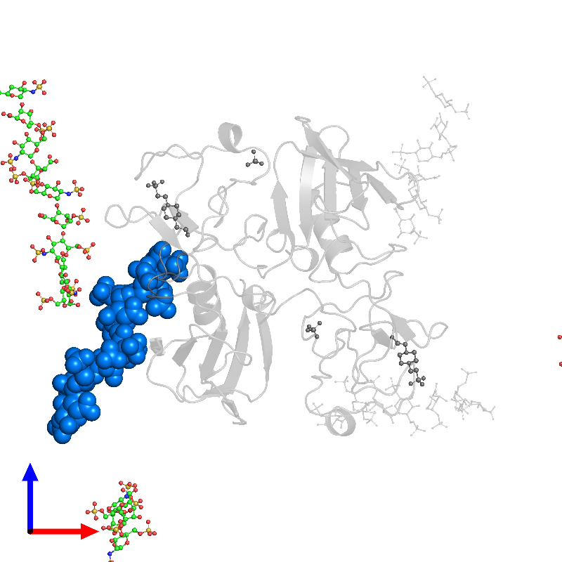 <div class='caption-body'>PDB entry 1gmo contains 1 copy of 2-deoxy-6-O-sulfo-2-(sulfoamino)-alpha-D-glucopyranose-(1-4)-2-O-sulfo-alpha-L-idopyranuronic acid-(1-4)-2-deoxy-6-O-sulfo-2-(sulfoamino)-alpha-D-glucopyranose-(1-4)-2-O-sulfo-alpha-L-idopyranuronic acid-(1-4)-2-deoxy-6-O-sulfo-2-(sulfoamino)-alpha-D-glucopyranose-(1-4)-2-O-sulfo-alpha-L-idopyranuronic acid-(1-4)-2-deoxy-6-O-sulfo-2-(sulfoamino)-alpha-D-glucopyranose-(1-4)-2-O-sulfo-alpha-L-idopyranuronic acid in assembly 1. This small molecule is highlighted and viewed from the front.</div>