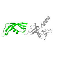 1 copy of CATH domain 3.30.1490.120 (Dna Ligase; domain 1) in DNA-directed RNA polymerase subunit Rpo7 in PDB 1go3.