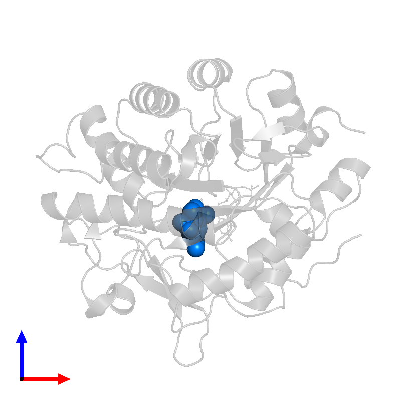 <div class='caption-body'>PDB entry 1gvr contains 1 copy of 2,4,6-TRINITROTOLUENE in assembly 1. This small molecule is highlighted and viewed from the front.</div>