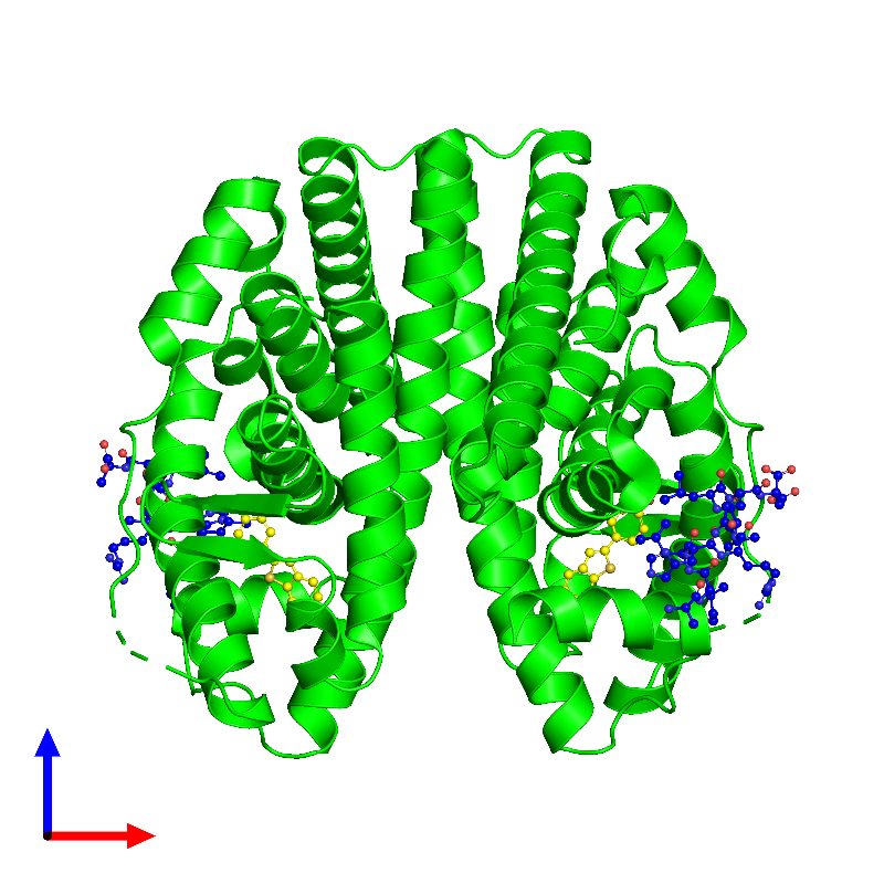 <div class='caption-body'><ul class ='image_legend_ul'> Tetrameric assembly 1 of PDB entry 1gwq coloured by chemically distinct molecules and viewed from the front. This assembly contains:<li class ='image_legend_li'>2 copies of Estrogen receptor</li><li class ='image_legend_li'>2 copies of Nuclear receptor coactivator 2</li><li class ='image_legend_li'>2 copies of RALOXIFENE CORE</li></ul></div>