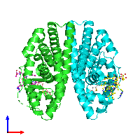 PDB 1gwq coloured by chain and viewed from the front.