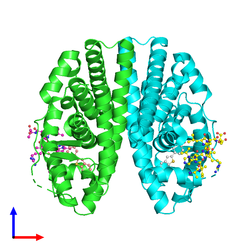 <div class='caption-body'><ul class ='image_legend_ul'>The deposited structure of PDB entry 1gwq coloured by chain and viewed from the front. The entry contains: <li class ='image_legend_li'>2 copies of Estrogen receptor</li><li class ='image_legend_li'>2 copies of Nuclear receptor coactivator 2</li><li class ='image_legend_li'>There is 1 non-polymeric molecule<ul class ='image_legend_ul'><li class ='image_legend_li'>2 copies of RALOXIFENE CORE</li></ul></li></div>