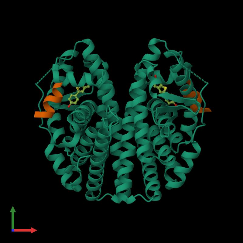 <div class='caption-body'><ul class ='image_legend_ul'>The deposited structure of PDB entry 1gwq coloured by chemically distinct molecules and viewed from the front. The entry contains: <li class ='image_legend_li'>2 copies of Estrogen receptor</li><li class ='image_legend_li'>2 copies of Nuclear receptor coactivator 2</li><li class ='image_legend_li'>There is 1 non-polymeric molecule<ul class ='image_legend_ul'><li class ='image_legend_li'>2 copies of RALOXIFENE CORE</li></ul></li></div>