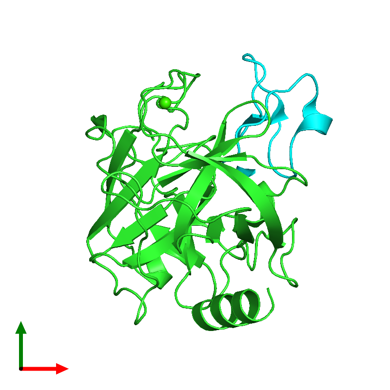 <div class='caption-body'><ul class ='image_legend_ul'>The deposited structure of PDB entry 1h9i coloured by chain and viewed from the top. The entry contains: <li class ='image_legend_li'>1 copy of Trypsin</li><li class ='image_legend_li'>1 copy of Trypsin inhibitor 2</li><li class ='image_legend_li'>There is 1 non-polymeric molecule<ul class ='image_legend_ul'><li class ='image_legend_li'>1 copy of CALCIUM ION</li></ul></li></div>