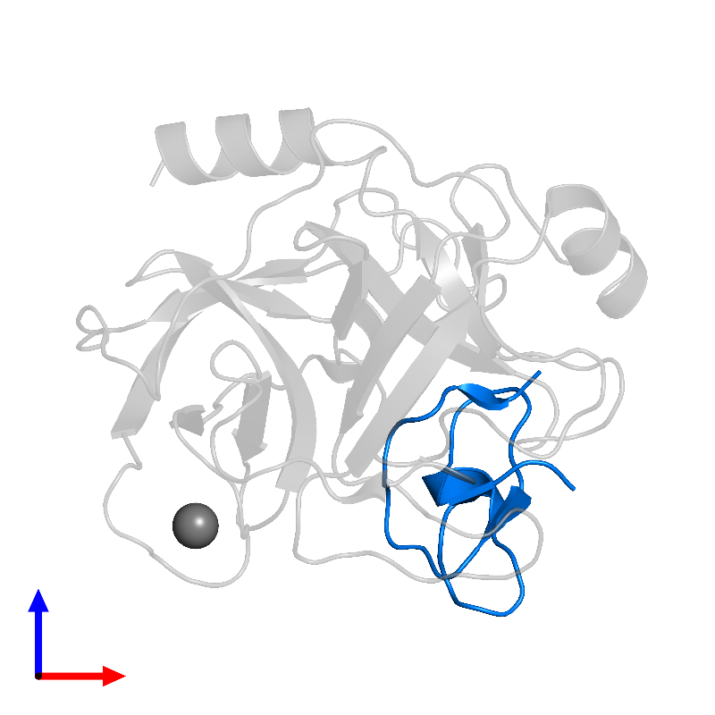 <div class='caption-body'>PDB entry 1h9i contains 1 copy of Trypsin inhibitor 2 in assembly 1. This protein is highlighted and viewed from the front.</div>
