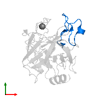 PDB 1h9i contains 1 copy of Trypsin inhibitor 2 in assembly 1. This protein is highlighted and viewed from the top.