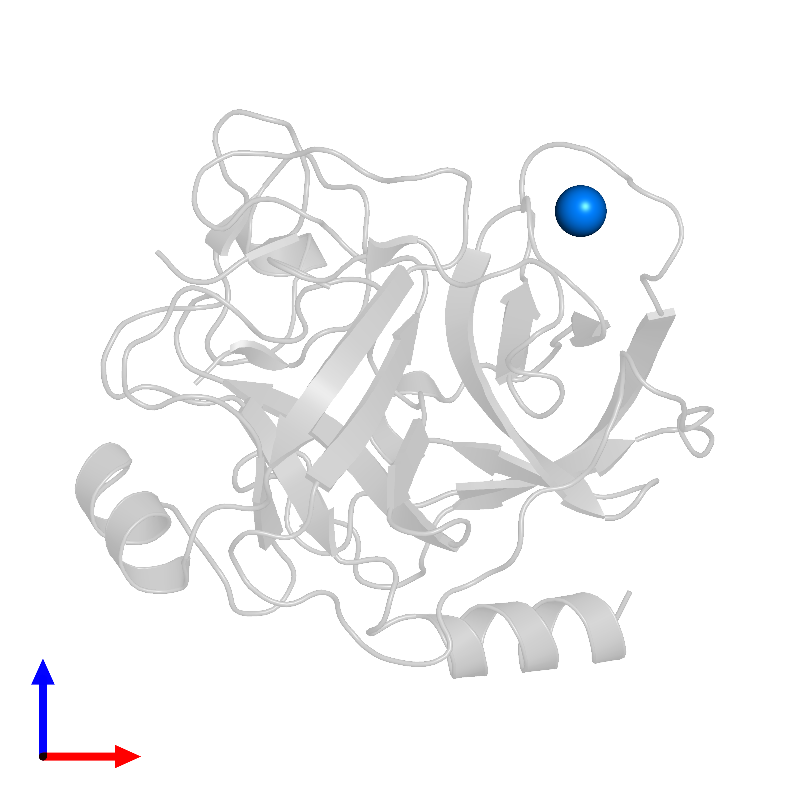 <div class='caption-body'>PDB entry 1h9i contains 1 copy of CALCIUM ION in assembly 1. This small molecule is highlighted and viewed from the front.</div>