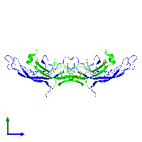 Tetrameric assembly 2 of PDB entry 1hcn coloured by chemically distinct molecules and viewed from the side.