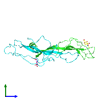 PDB 1hcn coloured by chain and viewed from the side.