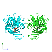 PDB 1hdg coloured by chain and viewed from the side.