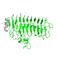 1 copy of Pfam domain PF00295 (Glycosyl hydrolases family 28) in Polygalacturonase in PDB 1hg8.