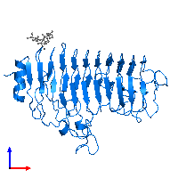 PDB 1hg8 contains 1 copy of Polygalacturonase in assembly 1. This protein is highlighted and viewed from the front.