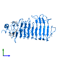 PDB 1hg8 contains 1 copy of Polygalacturonase in assembly 1. This protein is highlighted and viewed from the side.