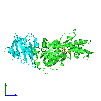 PDB 1hlu coloured by chain and viewed from the side.