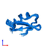PDB 1hly contains 1 copy of Potassium channel toxin alpha-KTx 2.5 in assembly 1. This protein is highlighted and viewed from the front.