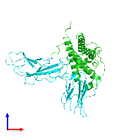 PDB 1hwh coloured by chain and viewed from the front.
