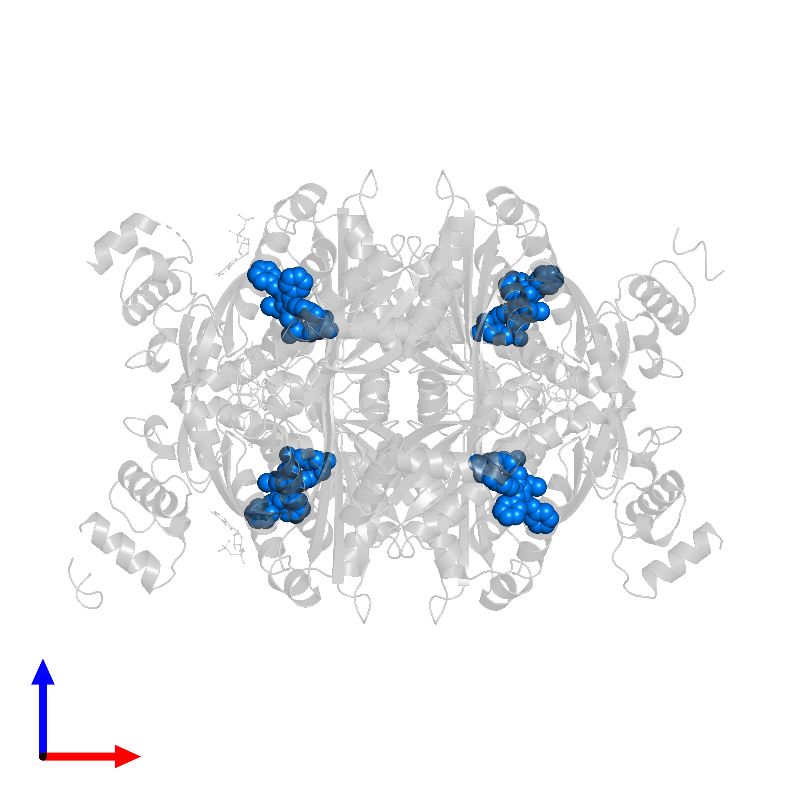<div class='caption-body'>PDB entry 1hwk contains 4 copies of 7-[2-(4-FLUORO-PHENYL)-5-ISOPROPYL-3-PHENYL-4-PHENYLCARBAMOYL-PYRROL-1-YL]- 3,5-DIHYDROXY-HEPTANOIC ACID in assembly 1. This small molecule is highlighted and viewed from the front.</div>