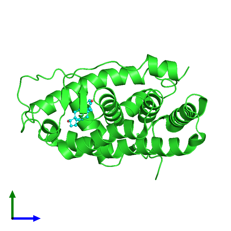 <div class='caption-body'><ul class ='image_legend_ul'>The deposited structure of PDB entry 1i38 coloured by chain and viewed from the side. The entry contains: <li class ='image_legend_li'>1 copy of ANDROGEN RECEPTOR</li><li class ='image_legend_li'>There is 1 non-polymeric molecule<ul class ='image_legend_ul'><li class ='image_legend_li'>1 copy of 5-ALPHA-DIHYDROTESTOSTERONE</li></ul></li></div>