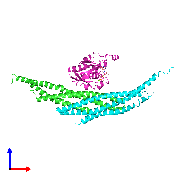 PDB 1i4t coloured by chain and viewed from the front.