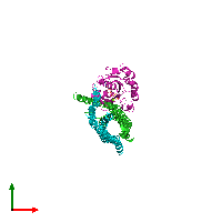 PDB 1i4t coloured by chain and viewed from the top.