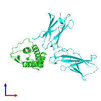 PDB 1iar coloured by chain and viewed from the front.