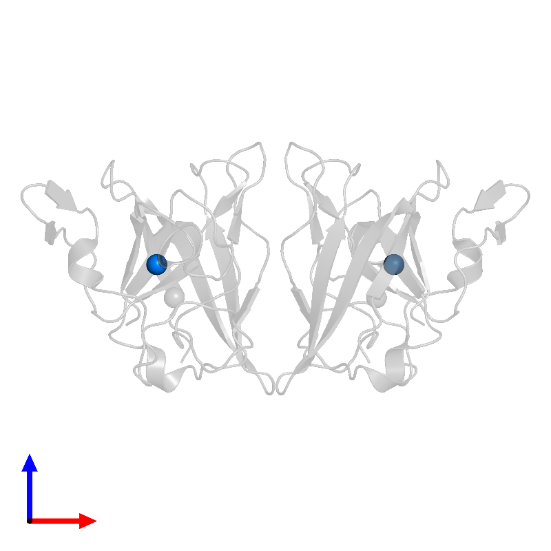 <div class='caption-body'>PDB entry 1ibd contains 2 copies of COPPER (II) ION in assembly 1. This small molecule is highlighted and viewed from the front.</div>