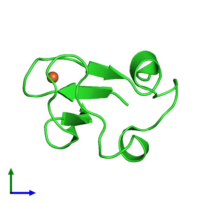 <div class='caption-body'><ul class ='image_legend_ul'>The deposited structure of PDB entry 1iu6 coloured by chain and viewed from the side. The entry contains: <li class ='image_legend_li'>1 copy of Rubredoxin</li><li class ='image_legend_li'>There is 1 non-polymeric molecule<ul class ='image_legend_ul'><li class ='image_legend_li'>1 copy of FE (III) ION</li></ul></li></div>