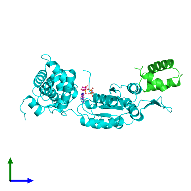 <div class='caption-body'><ul class ='image_legend_ul'>The deposited structure of PDB entry 1ixs coloured by chain and viewed from the side. The entry contains: <li class ='image_legend_li'>1 copy of Holliday junction ATP-dependent DNA helicase RuvA</li><li class ='image_legend_li'>1 copy of Holliday junction ATP-dependent DNA helicase RuvB</li><li class ='image_legend_li'>There is 1 non-polymeric molecule<ul class ='image_legend_ul'><li class ='image_legend_li'>1 copy of PHOSPHOAMINOPHOSPHONIC ACID-ADENYLATE ESTER</li></ul></li></div>