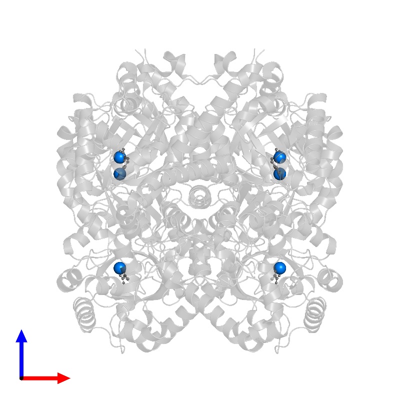 <div class='caption-body'>PDB entry 1izc contains 6 copies of MAGNESIUM ION in assembly 1. This small molecule is highlighted and viewed from the front.</div>