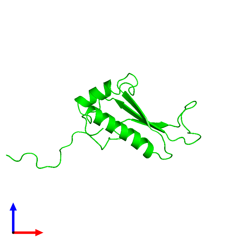 <div class='caption-body'><ul class ='image_legend_ul'> Monomeric assembly 1 of PDB entry 1j26 coloured by chemically distinct molecules and viewed from the front. This assembly contains:<li class ='image_legend_li'>One copy of Peptidyl-tRNA hydrolase ICT1, mitochondrial</li></ul></div>